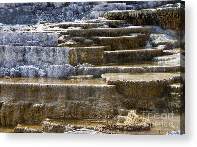 Yellowstone Acrylic Print featuring the photograph Mammoth Hot Springs by Larry Keahey