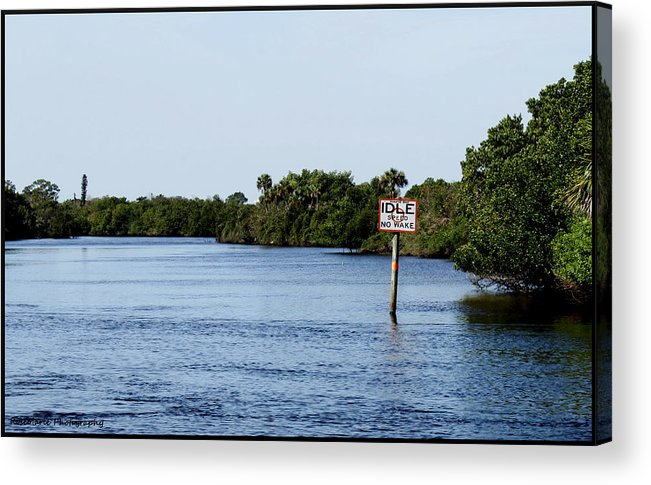 Landscape Acrylic Print featuring the photograph Manatee Zone by Vanessa Parent