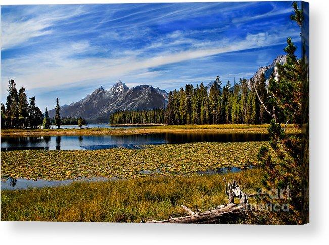 Grand Tetons Acrylic Print featuring the photograph Swan Lake by Robert Bales