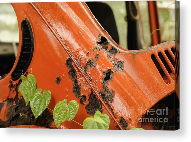 Vw Acrylic Print featuring the photograph The End Of The Line For A Vw by Nancy Greenland