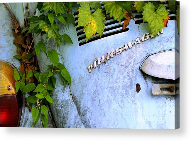 Car Acrylic Print featuring the photograph Vw Bug With Vines by Nancy Greenland