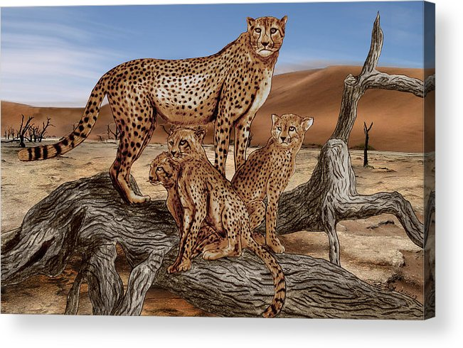 Cheetah Family Tree Acrylic Print featuring the drawing Cheetah Family Tree by Peter Piatt