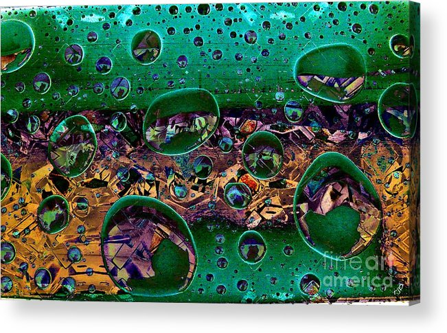 Chloroplast Acrylic Print featuring the photograph Chloroplasts by Ron Bissett