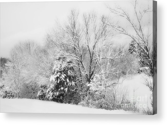 Snow Acrylic Print featuring the photograph Country Winter by Kathy Jennings