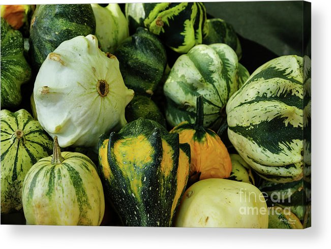 America Acrylic Print featuring the photograph Gourds Galore by Jennifer White
