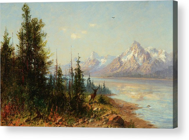 Jackson Lake Majesty Acrylic Print featuring the painting Jackson Lake Majesty, Wyoming by John Fery