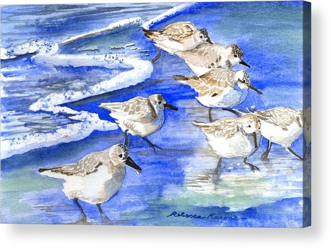 Plovers Acrylic Print featuring the painting Shore Birds by Rebecca Marona