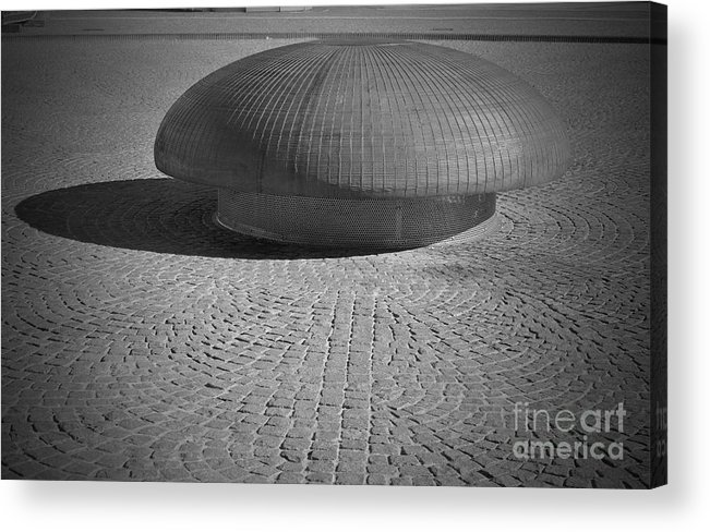 Mushroom Acrylic Print featuring the photograph Shrooming In Leipzig by Jost Houk