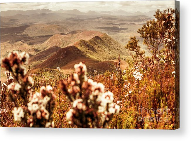 Nature Acrylic Print featuring the photograph Spring Mountain Blossoms by Jorgo Photography - Wall Art Gallery