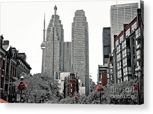 City Acrylic Print featuring the photograph City Of Torpnto by Elaine Manley