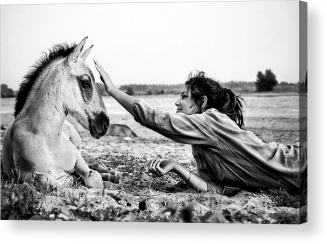 Horse Acrylic Print featuring the photograph Trustful Friendship by Justyna Lorenc