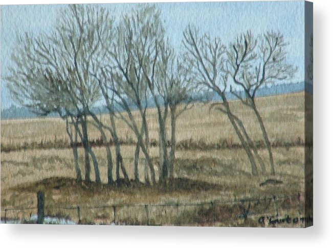 Landscape Acrylic Print featuring the painting Visitors by Lynn ACourt