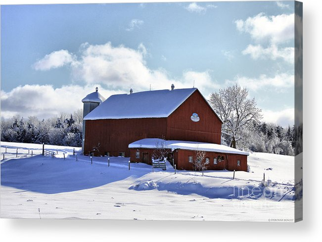 Winter Acrylic Print featuring the photograph Winter Red 2010 by Deborah Benoit