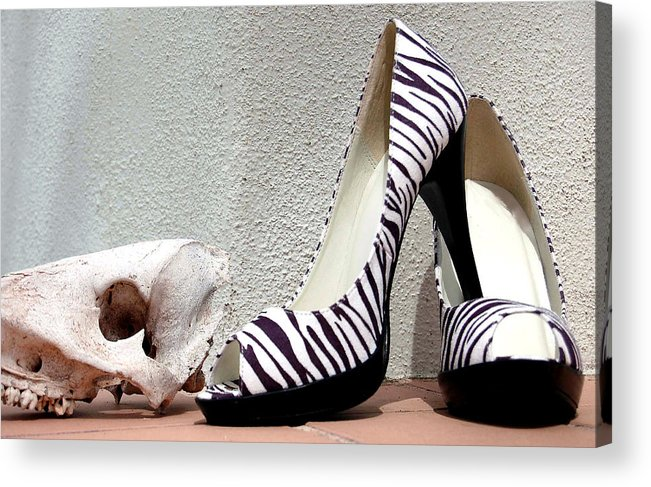 Shoes Acrylic Print featuring the photograph Zebra Heels And Skull by Heather S Huston