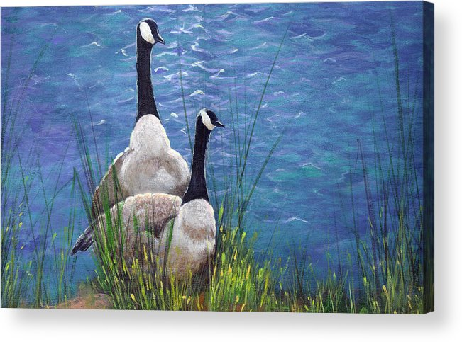 Landscape Acrylic Print featuring the painting Resting Geese by SueEllen Cowan