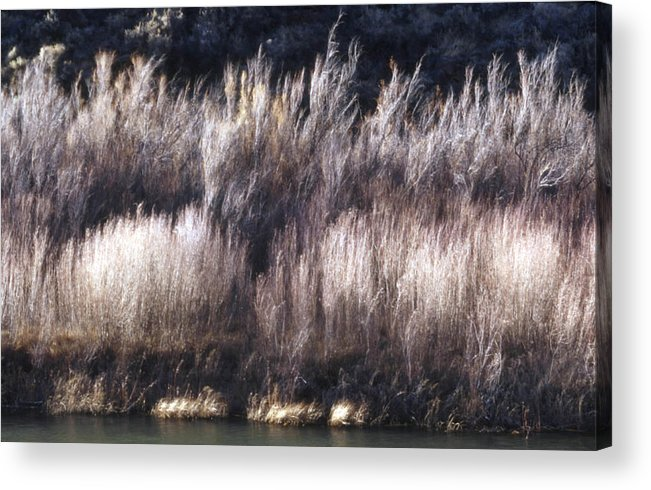 Landscape Acrylic Print featuring the photograph River Sage by Lynard Stroud