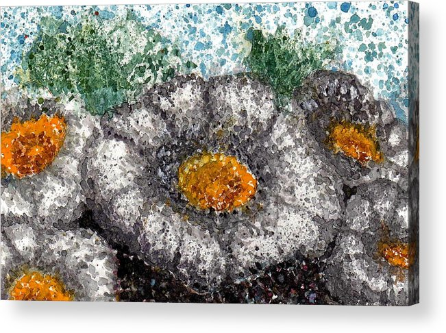 Watercolor Acrylic Print featuring the painting White Saguaro Cactus Blossom by Cynthia Ann Swan