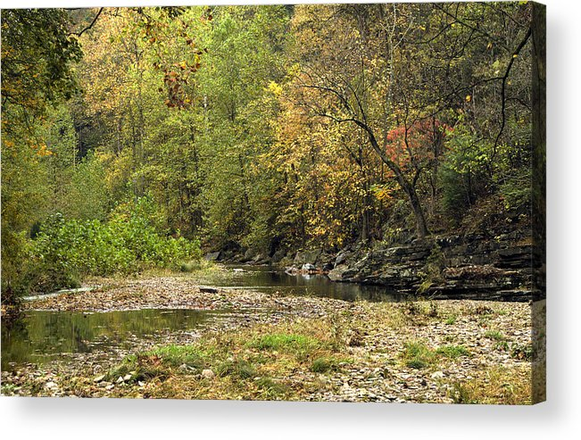 Landscape Photography Acrylic Print featuring the photograph Blue Hole Streambed by David Lester