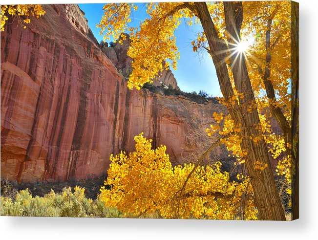 Capitol Reef National Park Acrylic Print featuring the photograph Capitol Reef Starburst by Ray Mathis