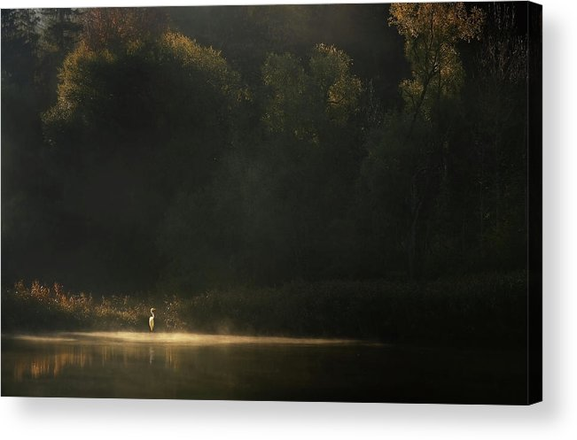 Isar Acrylic Print featuring the photograph Down By The River by Norbert Maier
