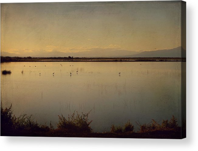 Water Acrylic Print featuring the photograph In These Peaceful Moments by Laurie Search