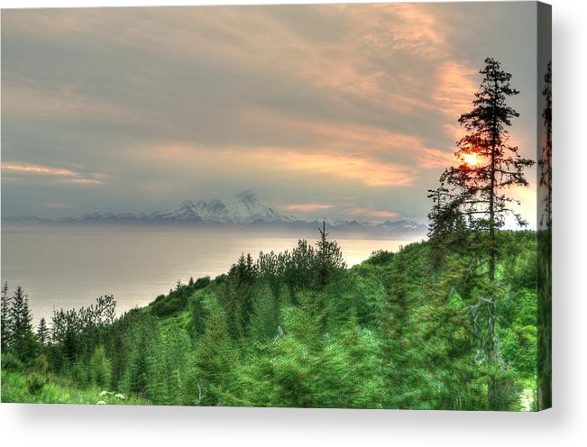 Acrylic Print featuring the photograph Johns Back Yard Anchor Point by Gene Rooney