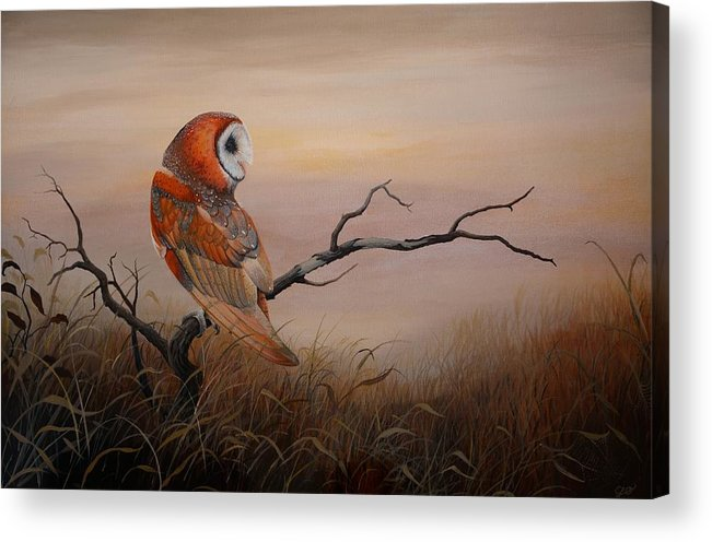 Barn Owl Acrylic Print featuring the painting Keeper Of Dreams by Charles Owens