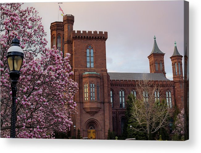 Andrew Pacheco Acrylic Print featuring the photograph Magnolias Near The Castle by Andrew Pacheco