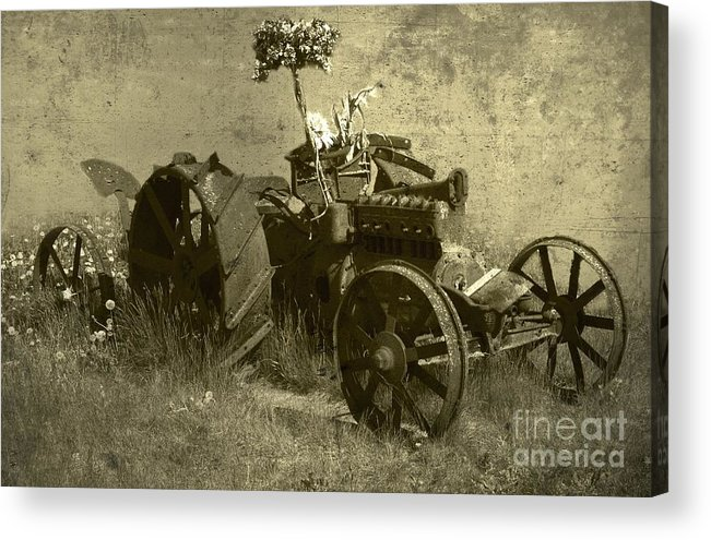 Old Acrylic Print featuring the photograph Old Tractor by Vladimiras Nikonovas