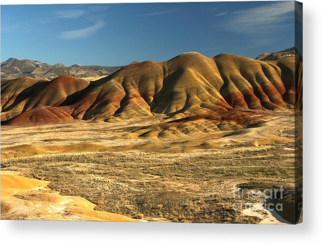 Painted Hills Acrylic Print featuring the photograph Oregon Painted Landscape by Adam Jewell