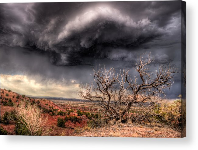 Dry Land dry Land Desert high Desert Tree Dead Red Blue Green Landscape Nature Drama Clouds Weather Storms new Mexico Nm Sw Southwest Southwestern new Mexico Jeep Tours roch Hart Acrylic Print featuring the photograph Thirst by Roch Hart