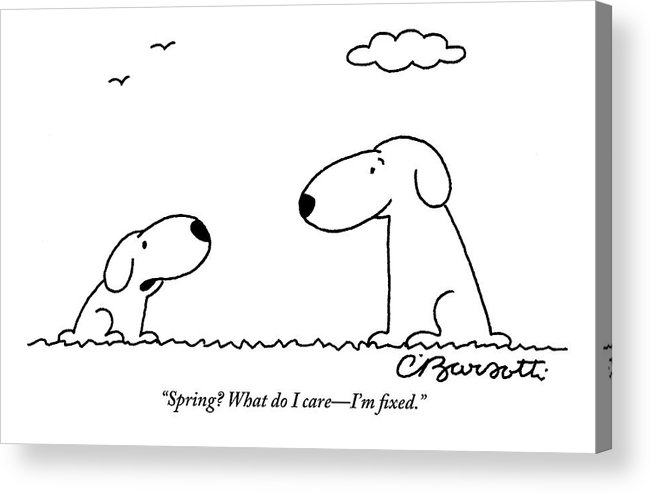 two dogs are seen talking to each other acrylic print by charles