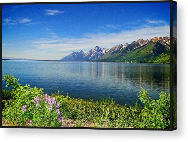 Yellowstone Acrylic Print featuring the photograph Yellowstone Lake by Donna Bevington