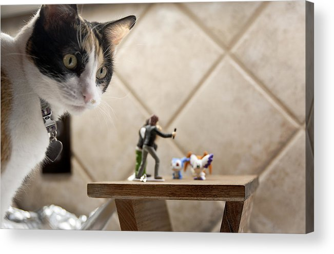 American Shorthair Acrylic Print featuring the photograph Catzilla by Melany Sarafis