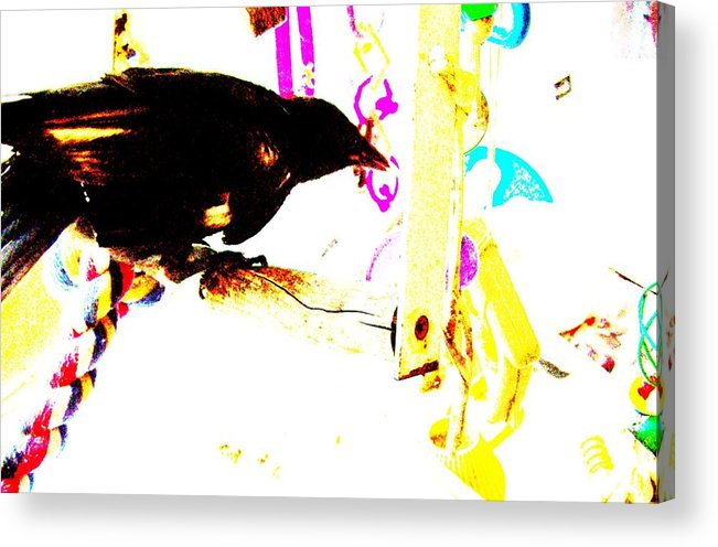 Crow Acrylic Print featuring the mixed media Curious Crow by YoMamaBird Rhonda
