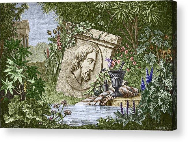 Dioscoridas Acrylic Print featuring the photograph Dioscorides, Ancient Greek Physician by Sheila Terry