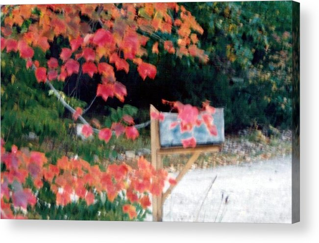 Photograph Acrylic Print featuring the photograph Fall 20 Mailbox by Debbie Wassmann