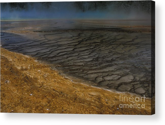 Yellowstone Acrylic Print featuring the photograph Grand Prismatic Spring Runoff by Sandra Bronstein