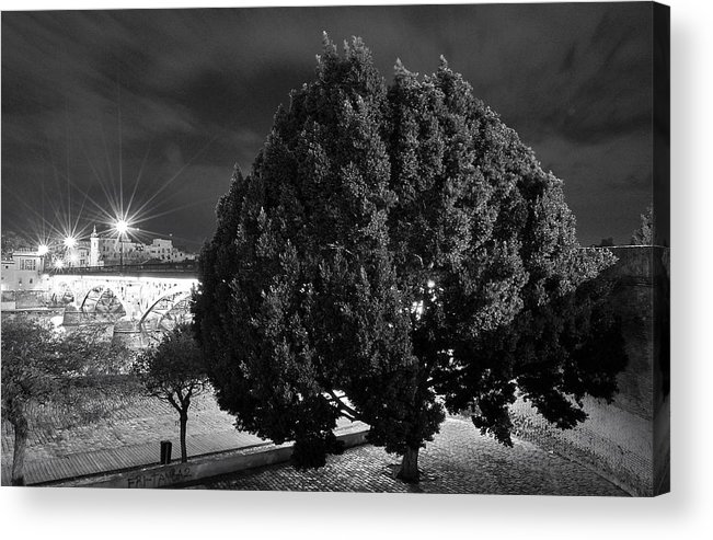 Landscapes Acrylic Print featuring the photograph Guardian Of The Bridge by Nuno Lorador Pires
