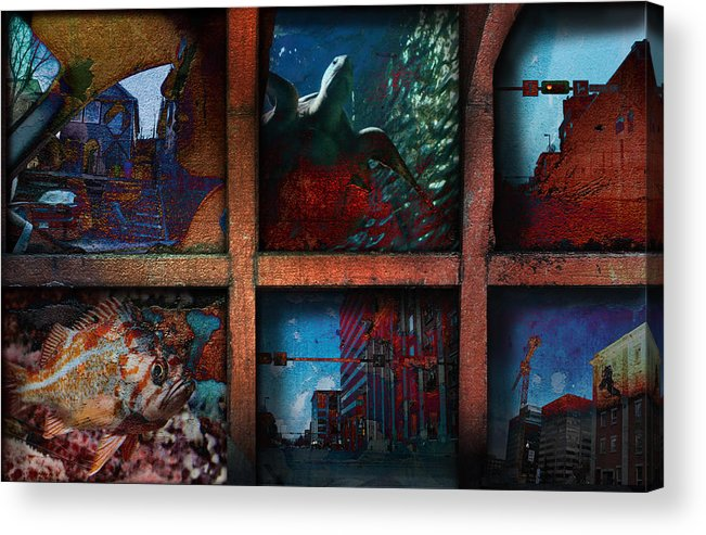 City Acrylic Print featuring the mixed media Steam Shovel by Janet Kearns