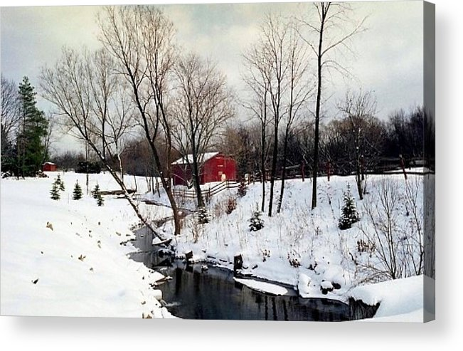Snow Acrylic Print featuring the photograph 072606-31 by Mike Davis