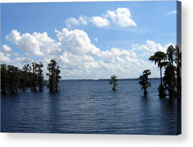 Scenic Lake Photograph Acrylic Print featuring the photograph Cypress Cove by Frederic Kohli