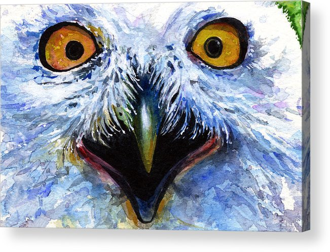Eye Acrylic Print featuring the painting Eyes Of Owls No. 15 by John D Benson
