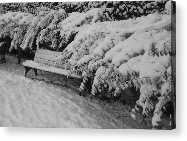 Acrylic Print featuring the photograph Snowtime by Valia Bradshaw