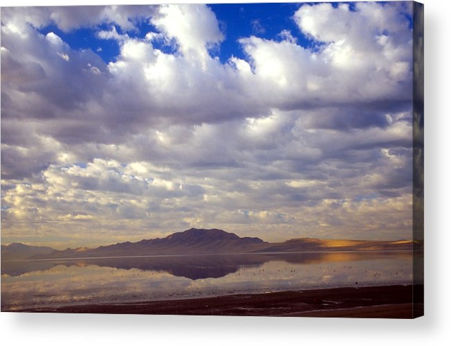 Great Salt Lake Acrylic Print featuring the photograph Antelope Island 1 by Steve Ohlsen
