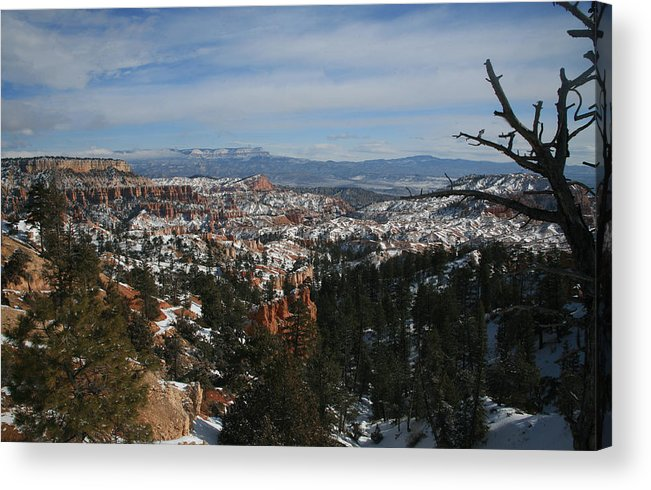 Canyon Acrylic Print featuring the photograph Bryce Canyon 2 by Rich Tanguay