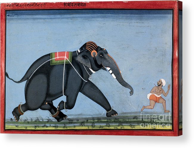 1750 Acrylic Print featuring the photograph Elephant & Trainer, C1750 by Granger