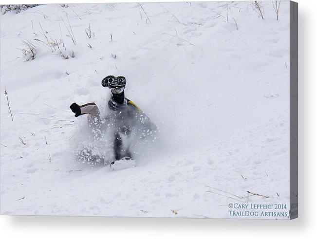 Snow Acrylic Print featuring the photograph Face Plant In The Snow by Cary Leppert