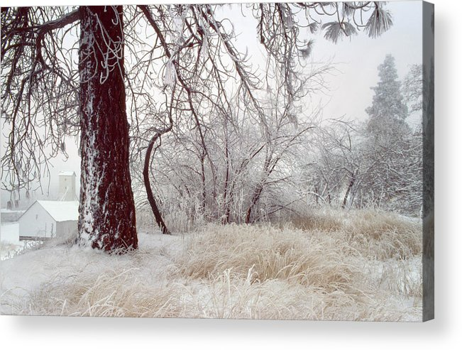 Palouse Acrylic Print featuring the photograph Frozen Morning In Palouse by Jerry McCollum