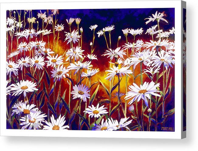 Daisy Daisies Field Flowers Warm Colors Cool Day Blues Acrylic Print featuring the painting Give Me Your Answer Do by Mike Hill